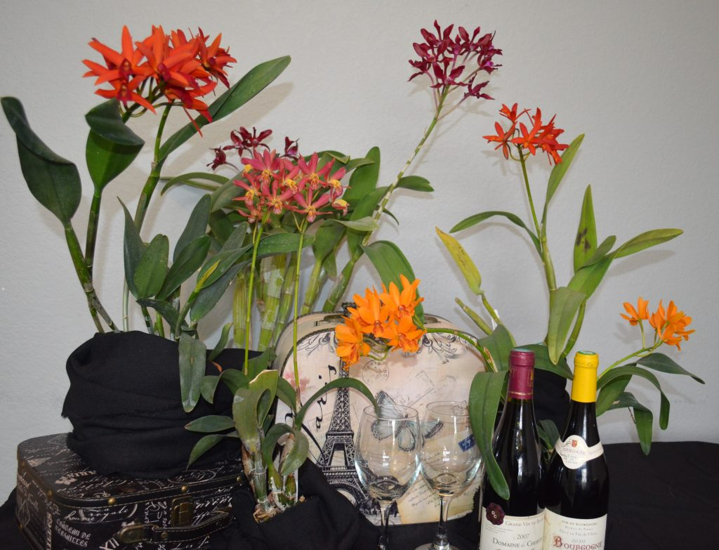 Karla V., DVOS and TOS, Mar. 25, 2021. Entry 4. Tabletop display with wine glasses.